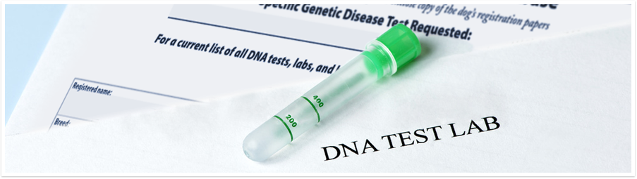 dna_title